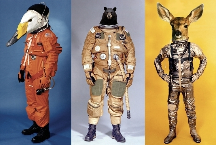 days woah.. space duck effort,  - cosmicnuggets | ello