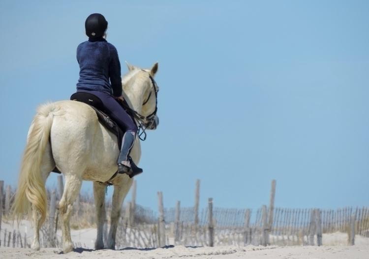 Rider Beach 4-10-2017 - horses, beach - 23johnnyg | ello