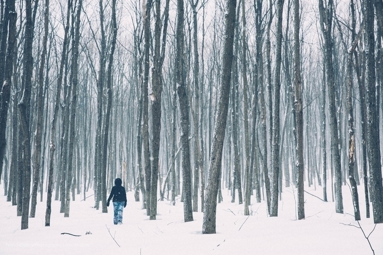 Lost forest Mont Rigaud (Rigaud - francisdufour | ello