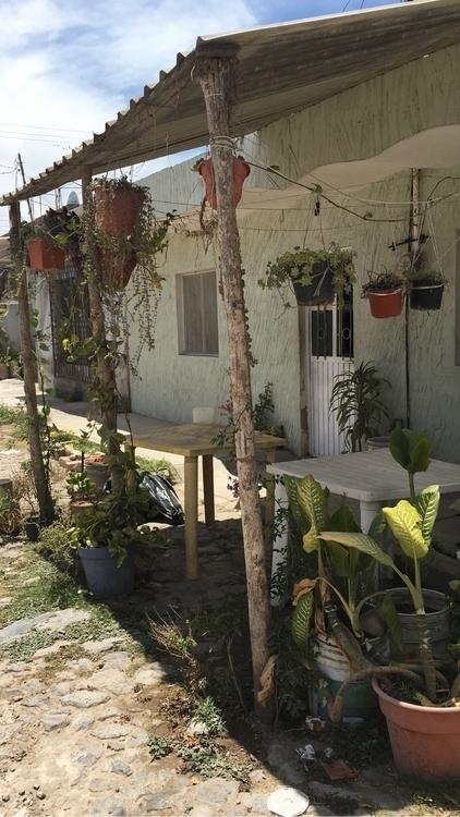 urbangarden, smalltown, mexico - rsantoscervantes | ello