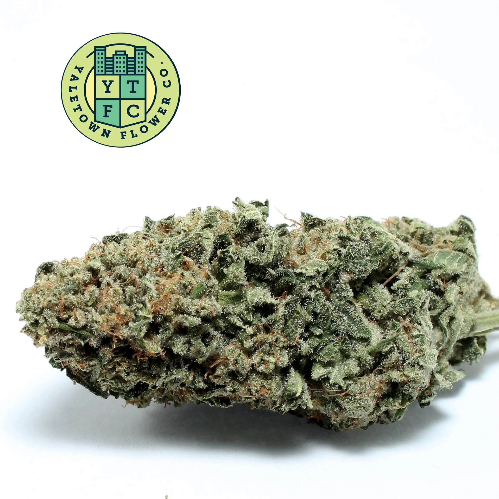 Yaletown Flower Co. brings Cann - greenz | ello