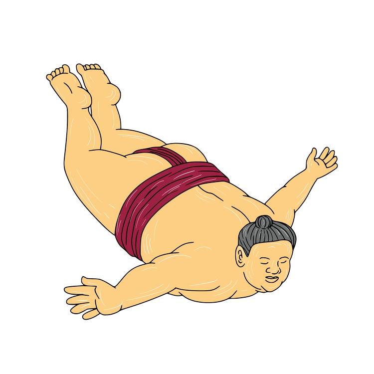 Skydiving - Japanese, Sumo, Wrestler - patrimonio | ello