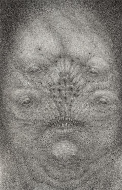 lumpy faced fella. approximatel - nathanreidt | ello