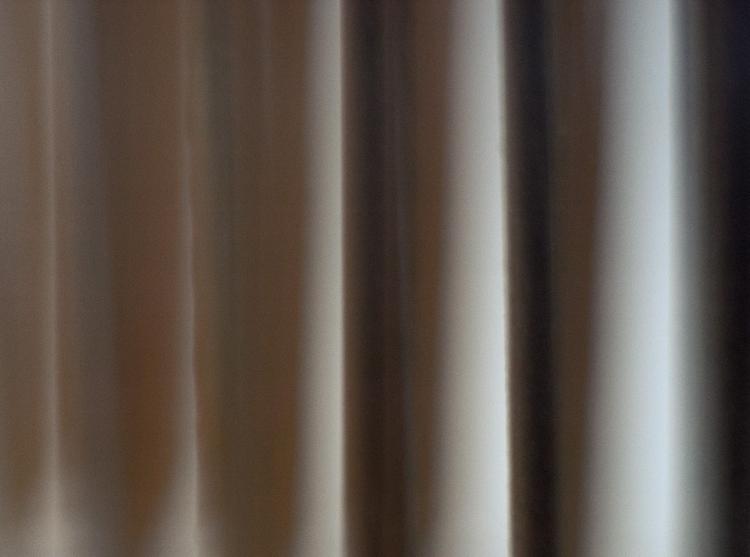 019 - abis - photography, closeup - pebez | ello