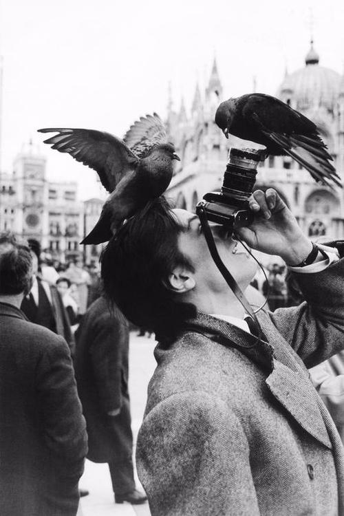 Alain Delon à Venise en train d - ohgoodgoods_mag | ello