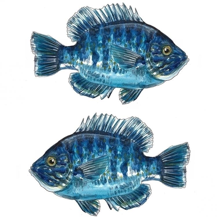 blue, colour, pattern, texture - aliellydesign   ello