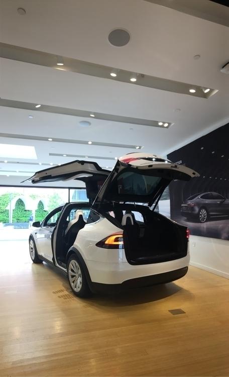 Checking Tesla cool - ModelX. - rowiro | ello