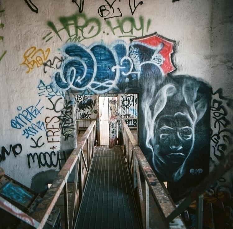 bipgraffiti#shotonfilm#ellograffiti#ellourbex#bayarea#hasselblad#mediumformat - teetonka   ello
