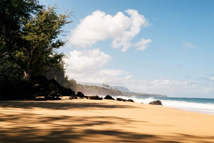 Kauapea Beach Kauai - landscape - neonicecream   ello