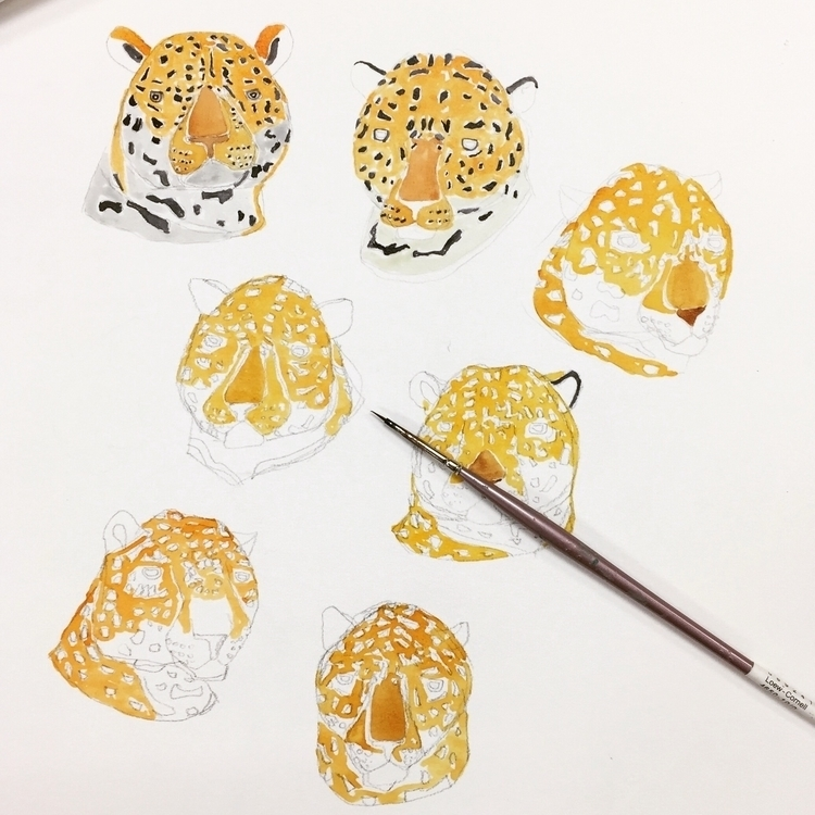 progress jaguar faces:lower_lef - igimidraws | ello