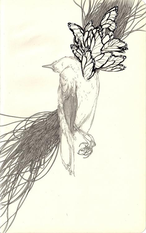 bird study - andisoto, moleskine - andimacka | ello