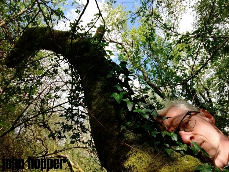 FRIEND TREE - artphotography, forest - johnhopper | ello