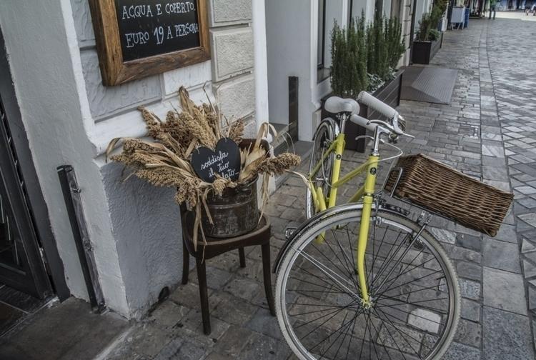 Con una bici cesta de mimbre po - avantumbikes | ello