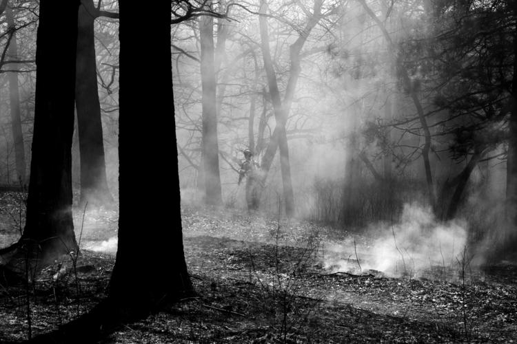 Woods =========== Fujifilm - Toronto - benroffelsen   ello