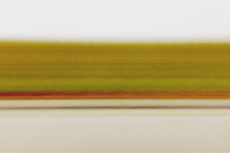 Verge - shot iPhone 5 edited In - lioneldp | ello