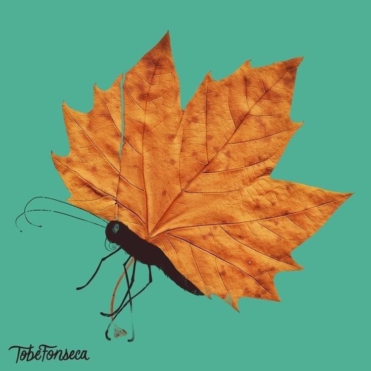 Fall / Tobiasfonseca.com - tshirt - tobefonseca | ello