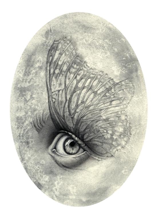 Fly - art, illustration, drawing - laurapedrettiart | ello