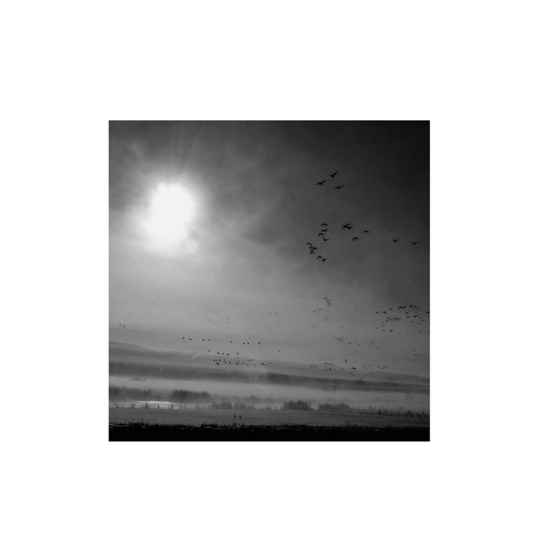 monique2211 Post 24 Apr 2017 13:24:27 UTC   ello
