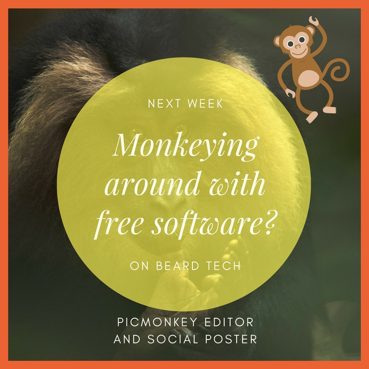 art show - monkeys, circles, typography - beardtechman   ello