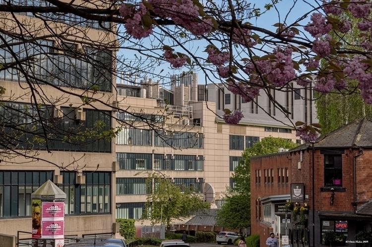 leedsuniversity, urban, architecture - tecnonaut | ello