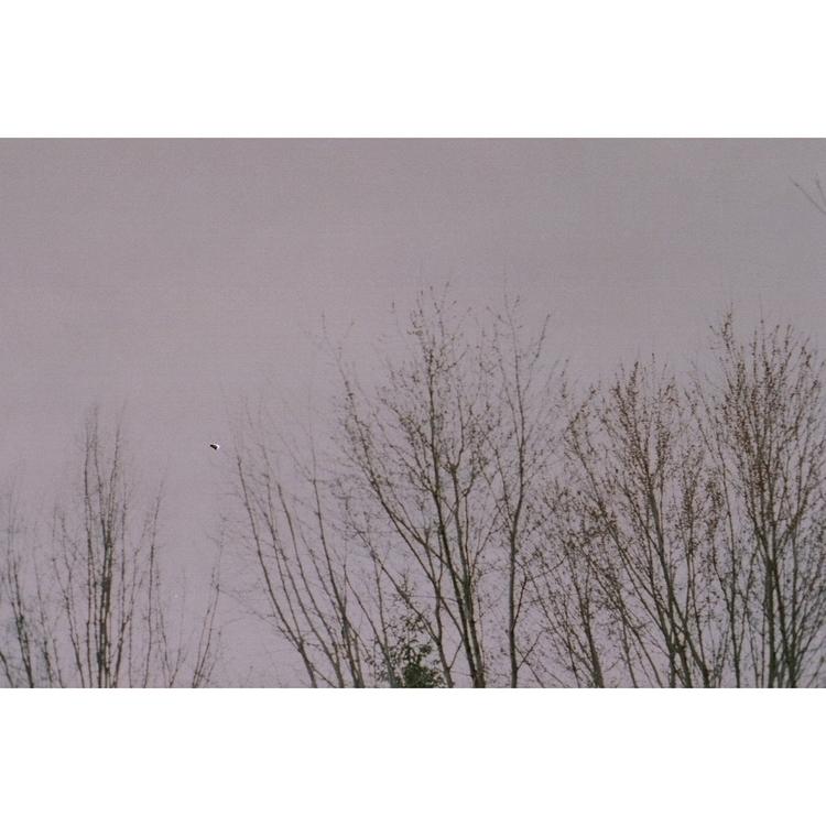 sobre vazios, 2011 - 35mm, analog - etakaki | ello