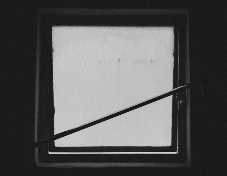 032 - viu - photography, monochrome - pebez | ello