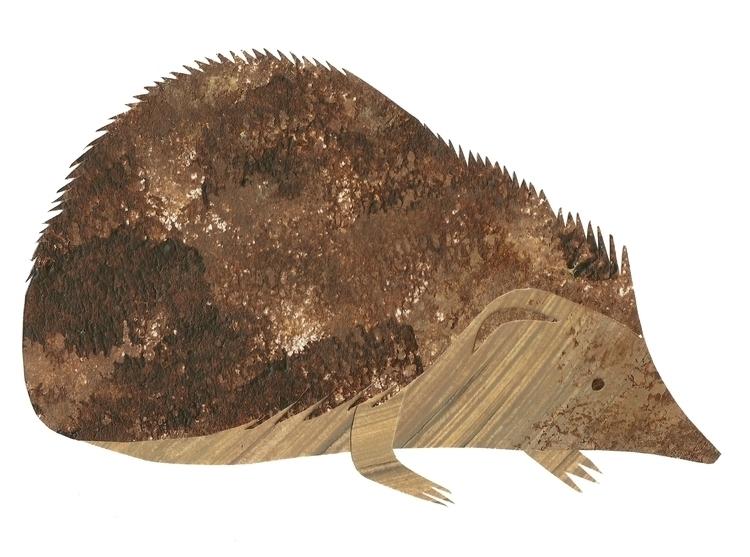 Hedgehog - illustration, collage - staceyknights | ello