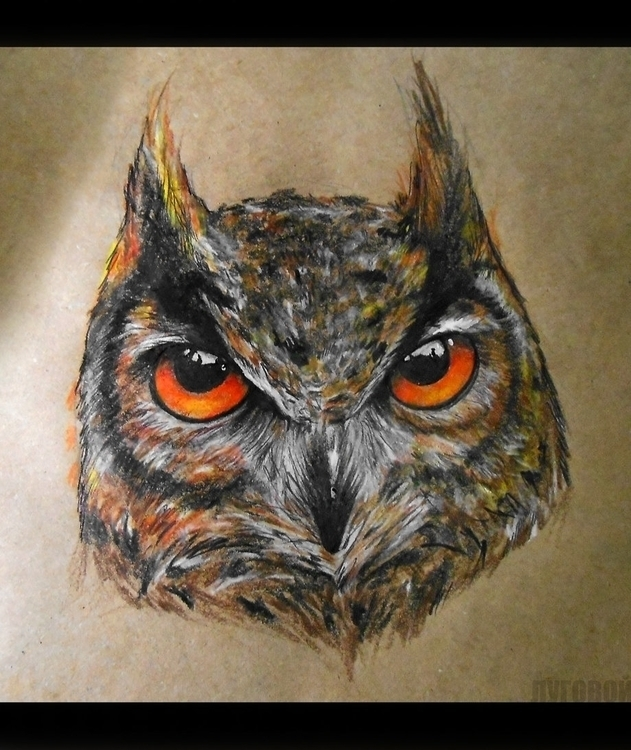 Owl - owl, owls, illustration, painting - borodau4 | ello