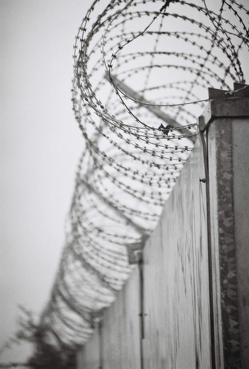 Wires 2- C41 Black white Photog - anlia-8183 | ello