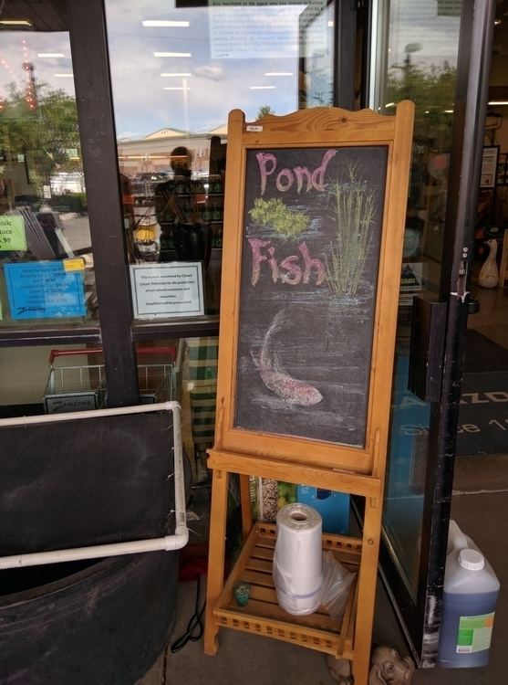 chalkboard, advertisement, drawing - satoita | ello