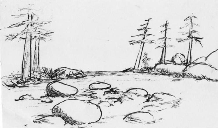 Quick trees - illustration, #pens - cheechwiz | ello