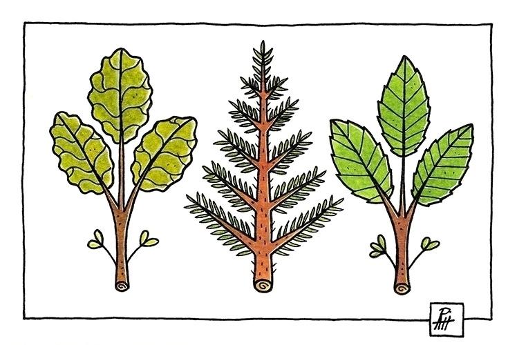 Leaves - illustration, painting - marcorizzi-1205 | ello