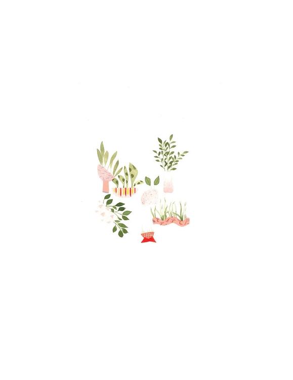 Plant Study Pink - illustration - mitsubishiufjfinancial   ello