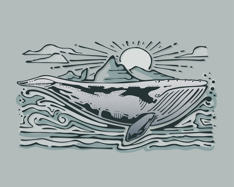 Gray whale - whale,animal,sea,ocean,water,illustration,drawing - bernardojbp | ello
