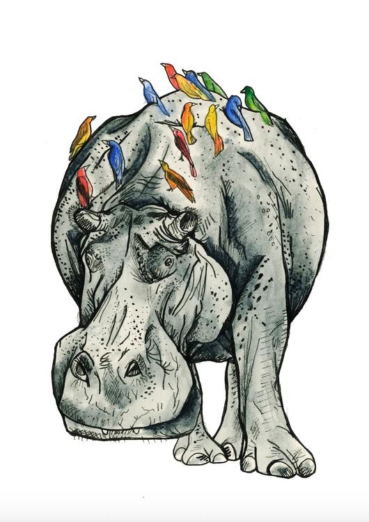 Hippo - hippo, hippopotamus, animal - cmarrion | ello