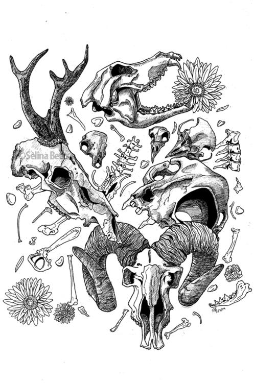 A3 sized India Ink Illustraton  - selinabetts | ello