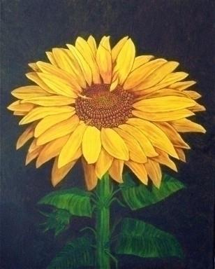 Sunny Flower - painting - brandyhouse | ello