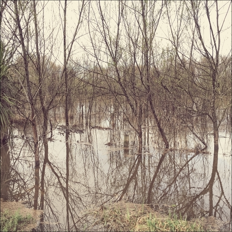 Flood waters - landscape, newzealand - marham1160 | ello