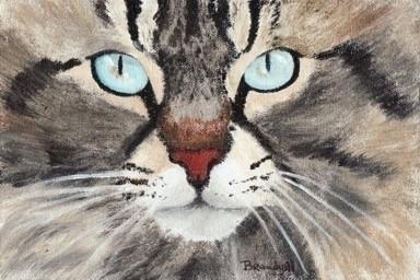 Blue Eyes - painting - brandyhouse | ello