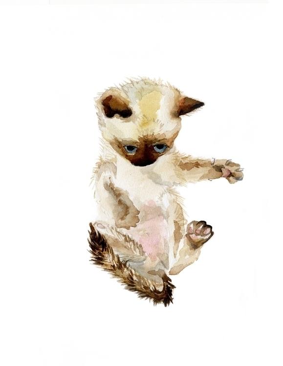 favorite kittens painted - siamesecat - wanderinglaur | ello