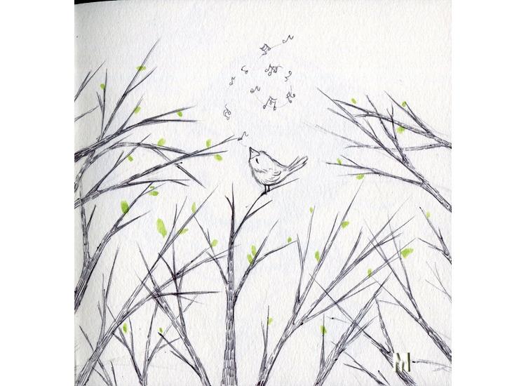 Pinochio - illustration, drawing - mirilustra | ello