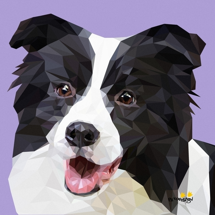 Border Collie - illustration, animals - patodesign | ello