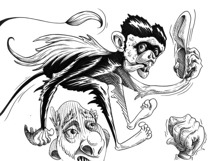 Troublemaker monkey - illustration - kaiman-6057 | ello