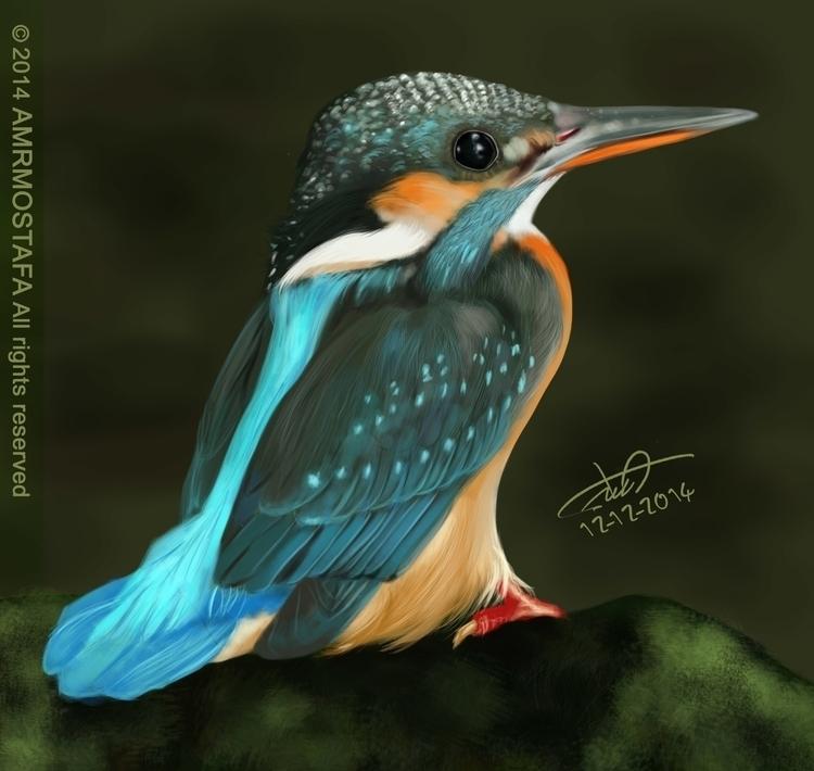 Beautiful Bird - illustration, painting - amromostafa | ello