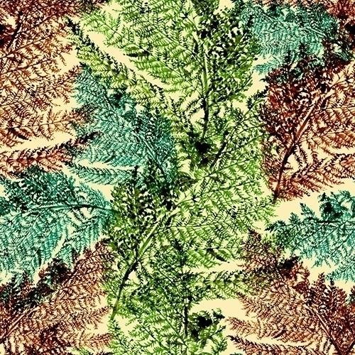 Fern - fern, ferns, nature, mothernature - gretaberlin | ello