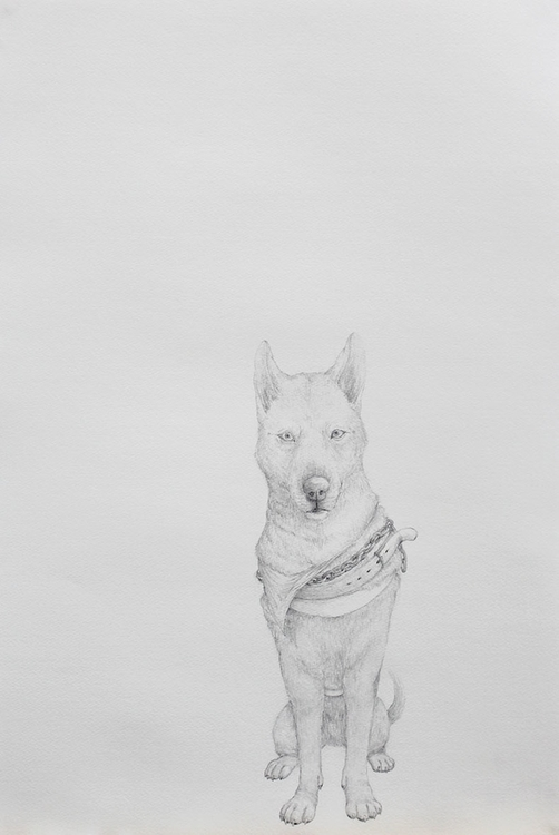conditions - drawing, fineart, dog - ayumiinagaki | ello