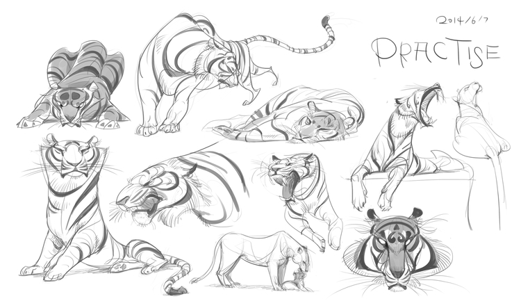 tiger, animal, design, practice - cynthiaxing | ello