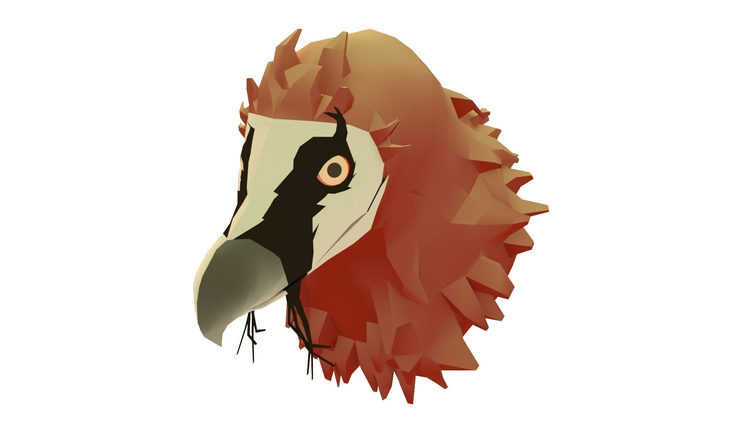 bearded vulture - illustration, 3Dillustration - annaschillings | ello