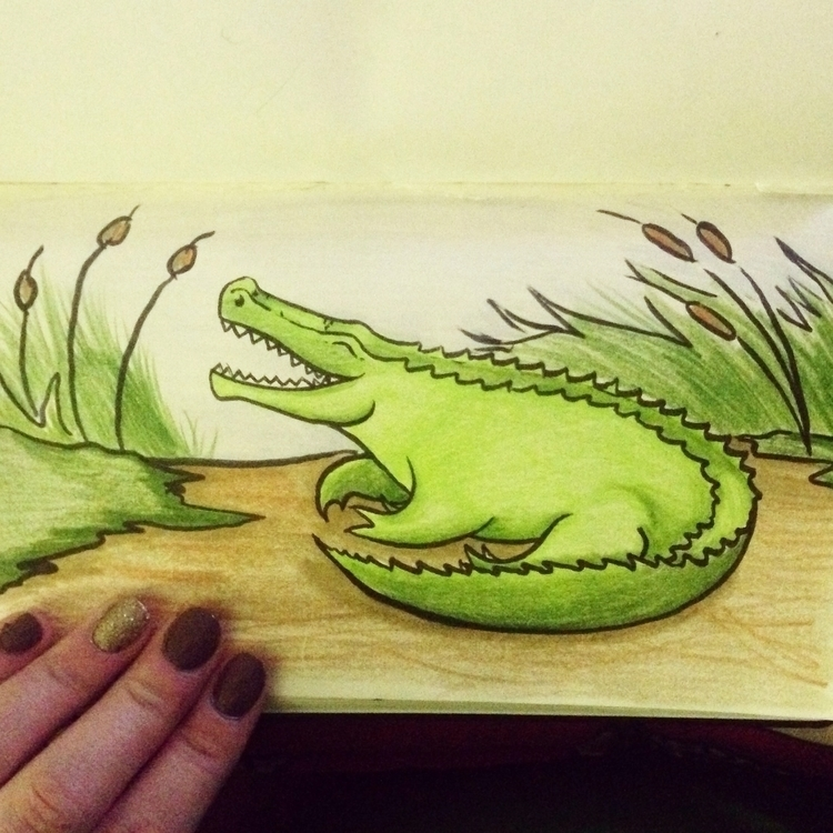Alligator - art, drawing, illustration - lyndaparker | ello