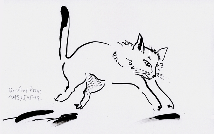 cat - 5, 2013 02 paper, ink 25 - istvanocztos | ello